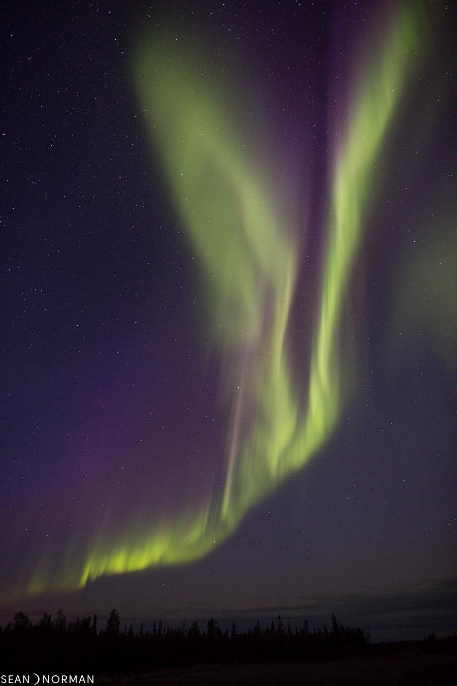 Sean's Yellowknife Guesthouse & Northern Lights Yellowknife - 1.jpg