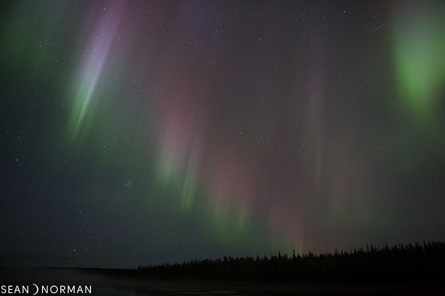 Sean's Guesthouse - Yellowknife B&B - Northern Light Tours - 5.jpg