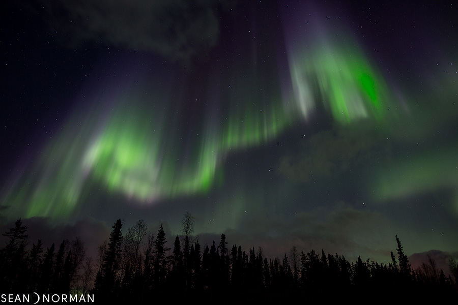 Sean's Guesthouse - Yellowknife Bed and Breakfast - Northern Light Tours Yellowknife - 3.jpg