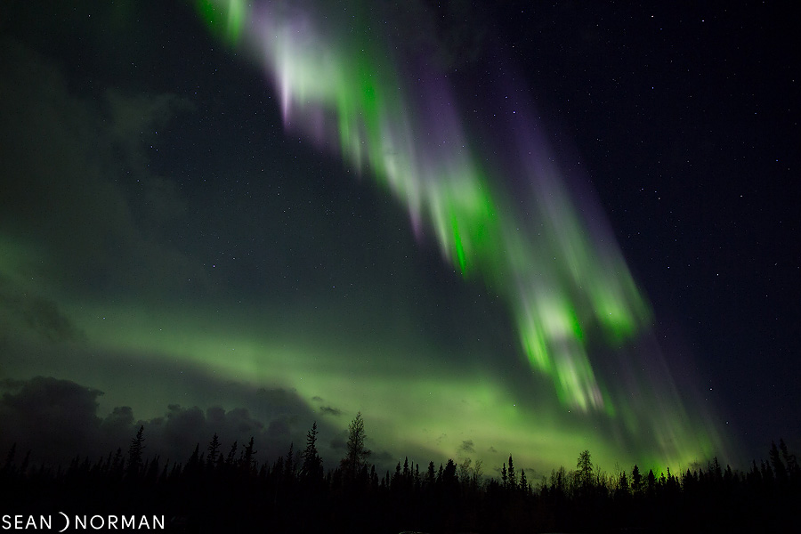 Sean's Guesthouse - Yellowknife Bed and Breakfast - Northern Light Tours Yellowknife - 4.jpg