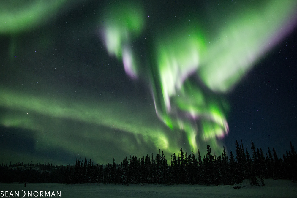 Sean's Yellowknife Guesthouse & Northern Lights Tours - Canada Aurora Photos - 5.jpg