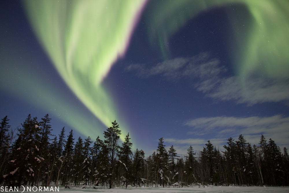 Yellowknife Northern Light Tours - Sean's Guesthouse - Yellowknife Bed & Breakfast - Header.jpg
