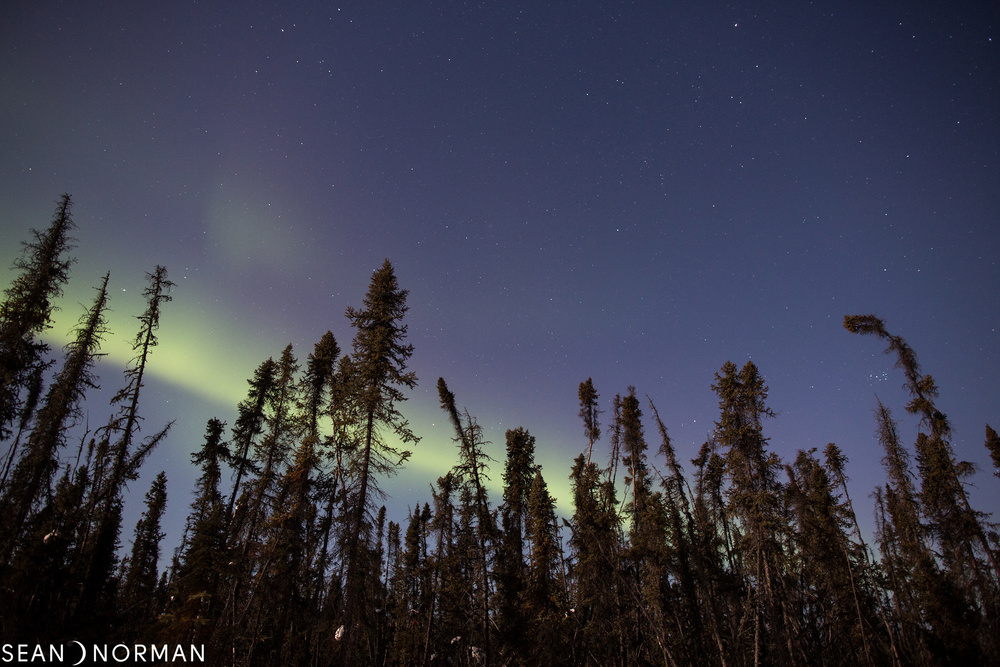 The Best Place to See the Northern Lights - Sean's Guesthouse Yellowknife Canada - B&B Accommodation - 1.jpg
