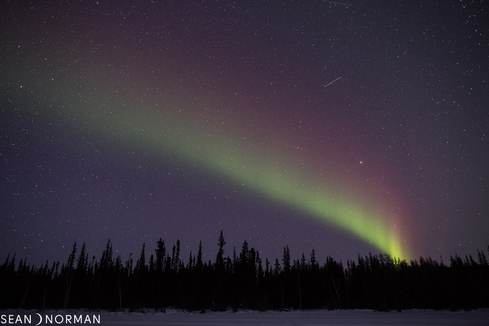 Sean's Yellowknife Guesthouse - Yellowknife Northern Light Tours - B&B Accommodation Yellowknife - 1.jpg