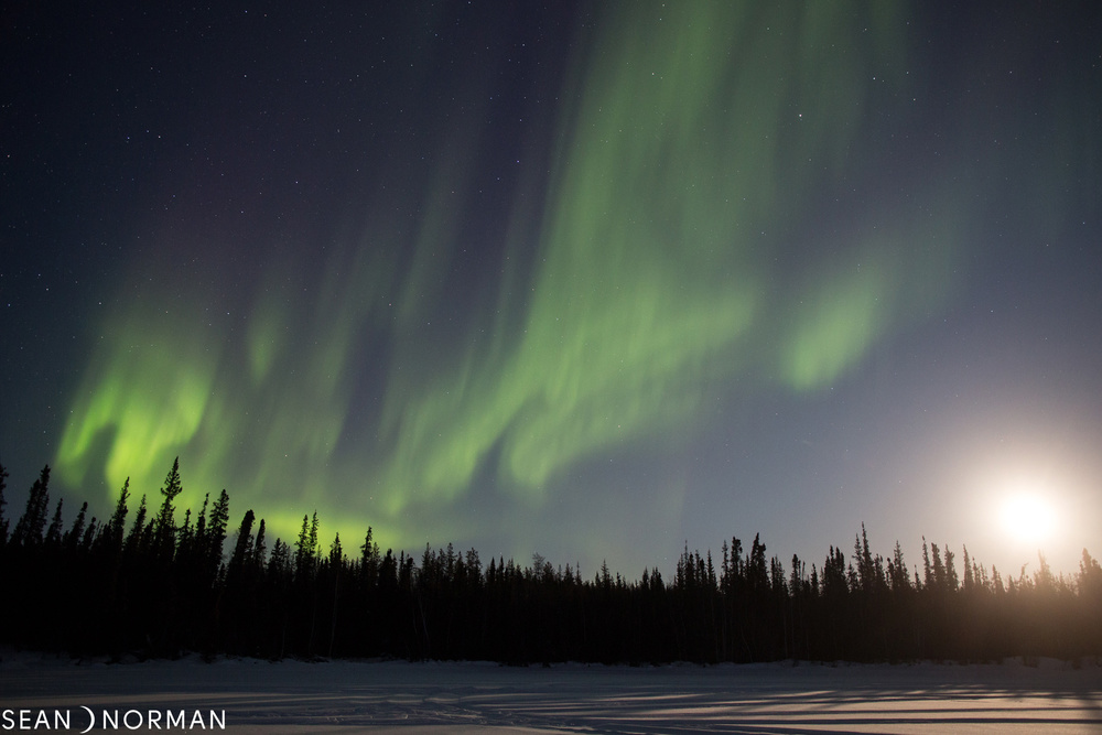Sean's Yellowknife Guesthouse - Yellowknife Northern Light Tours - B&B Accommodation Yellowknife - 4.jpg