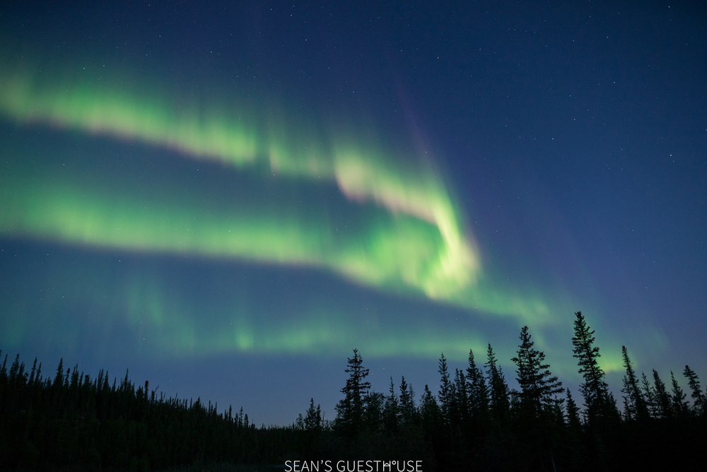 Yellowknife Northern Lights Tours - Sean's Bed & Breakfast Yellowknife - Summer Aurora - 2.jpg