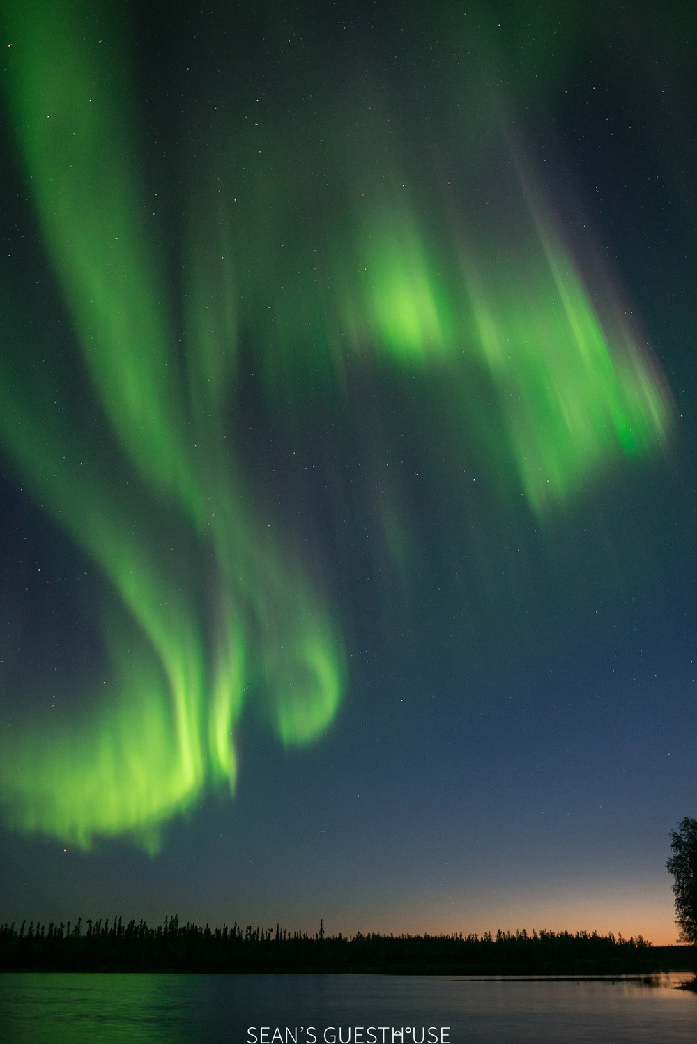 Sean's Guesthouse - Yellowknife Aurora Borealis - August Aurora - 7.jpg