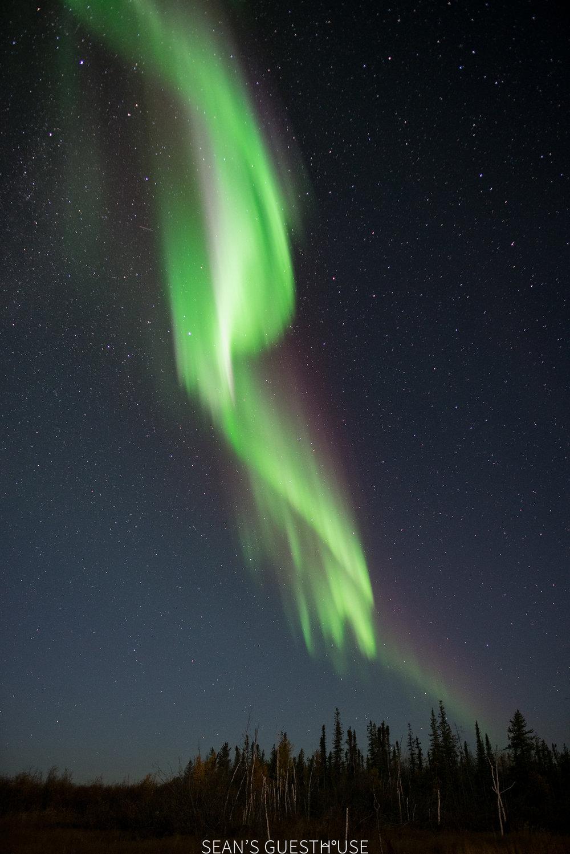 Yellowknife Northern Lights - Bed & Breakfast - 7.jpg