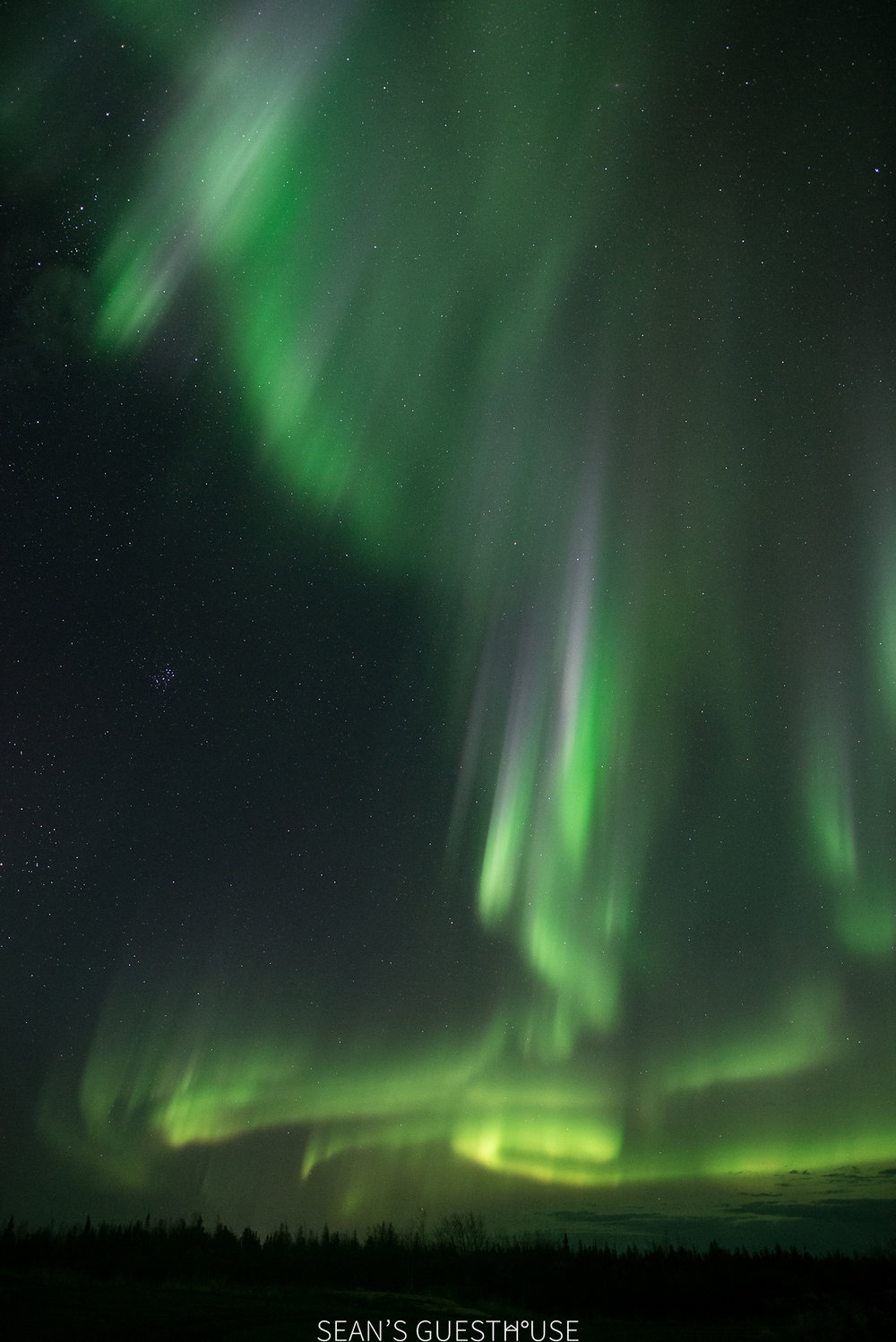 Yellowknife Bed & Breakfast - Northern Lights Tours - 8.jpg