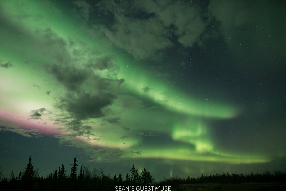 Yellowknife Bed & Breakfast - Northern Lights Tours - 10.jpg