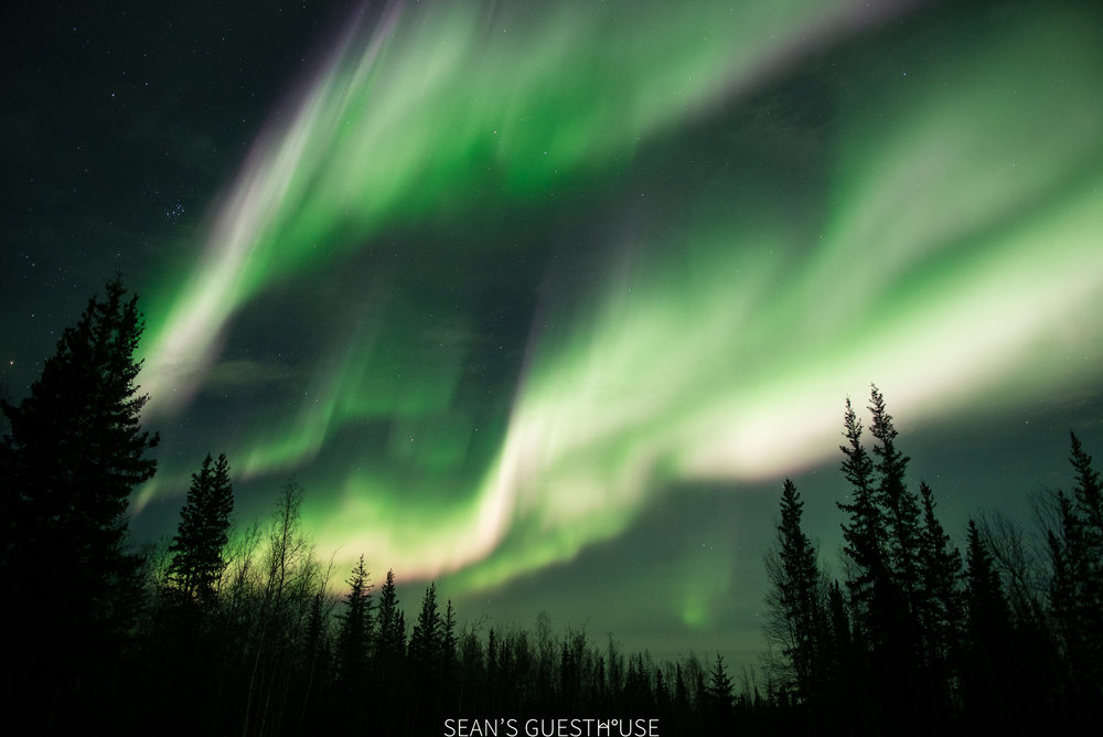 Yellowknife Northern Lights - Sean's Guesthouse - 2.jpg