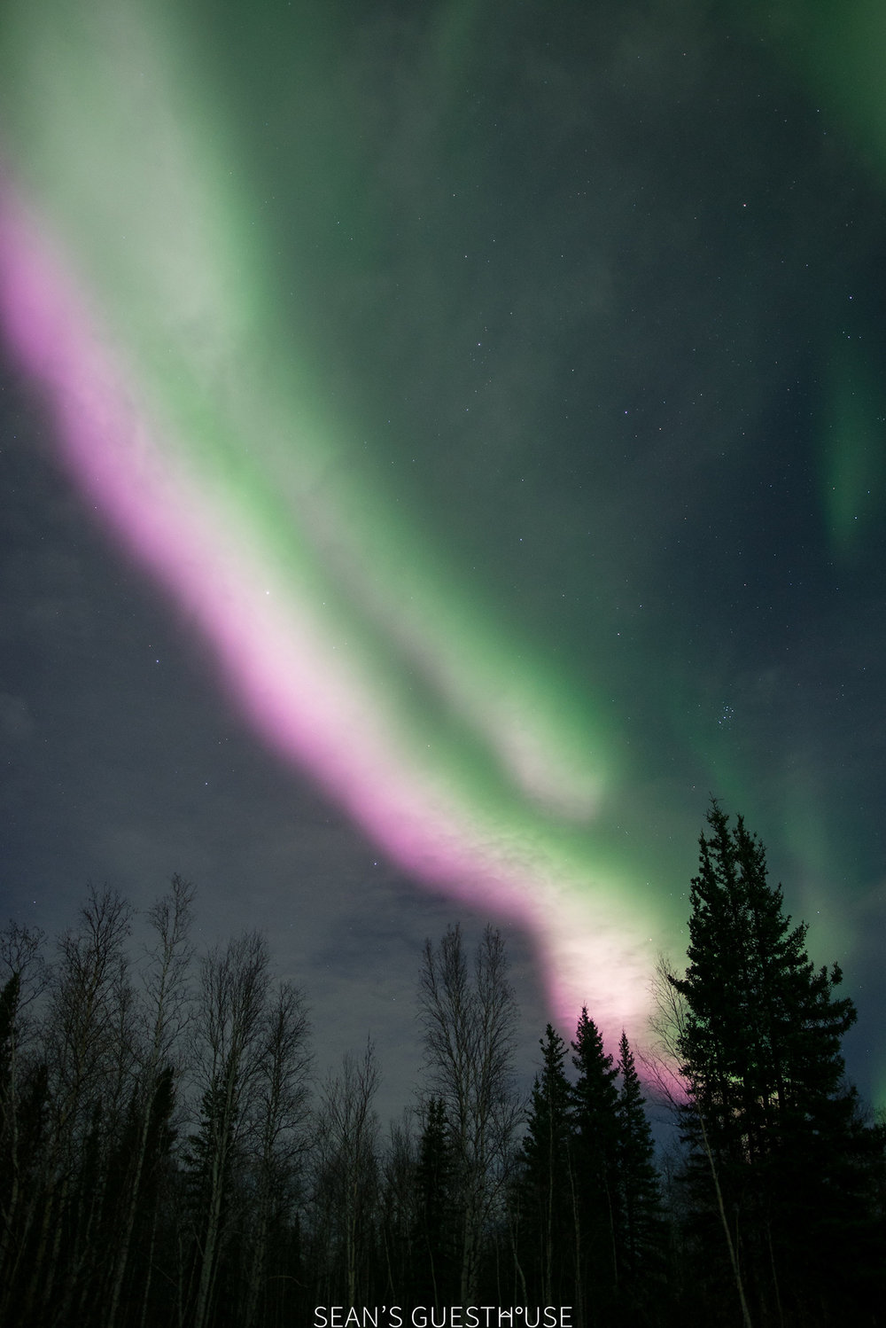 Yellowknife Northern Lights - Sean's Guesthouse - 3.jpg