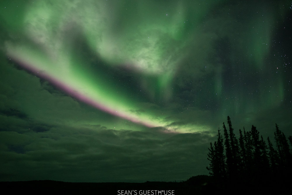 Yellowknife Northern Lights - Sean's Guesthouse - 4.jpg