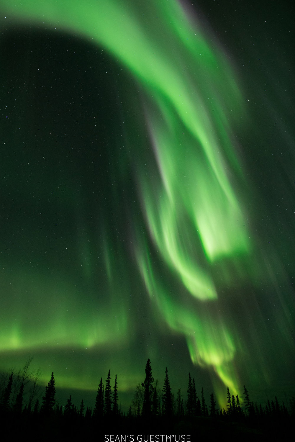 Yellowknife Northern Lights - Bed and Breakfast - 7.jpg