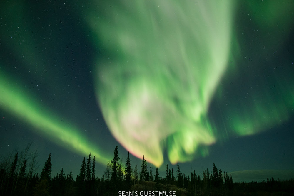 Yellowknife Northern Lights - Bed and Breakfast - 8.jpg