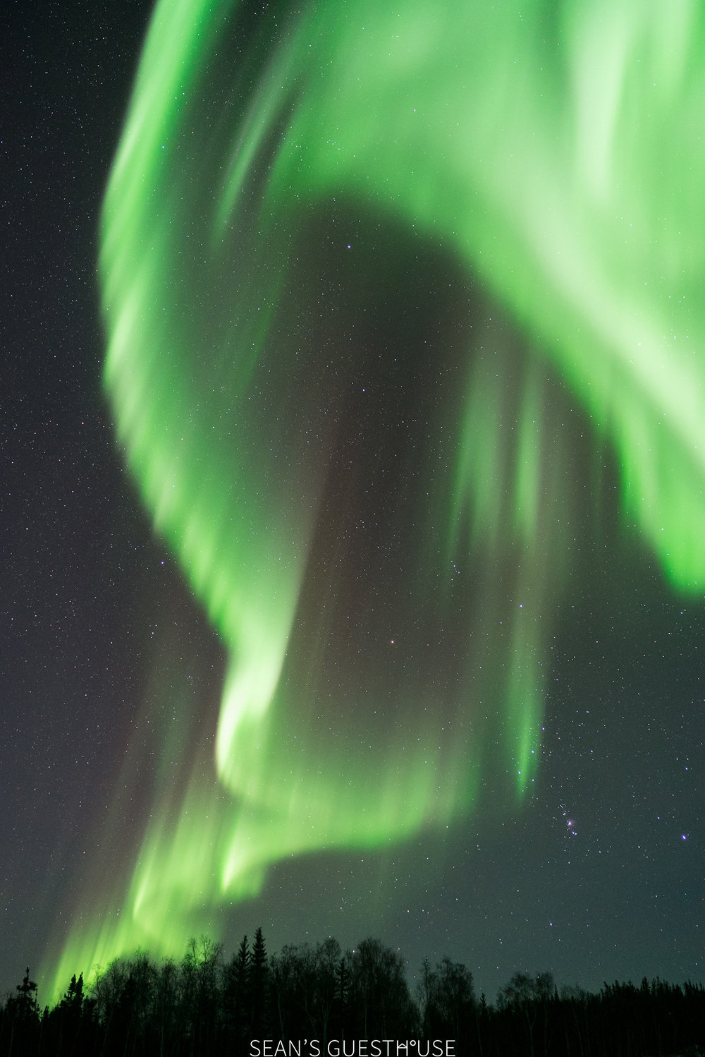 Northern Lights Hunting Yellowknife - 3.jpg