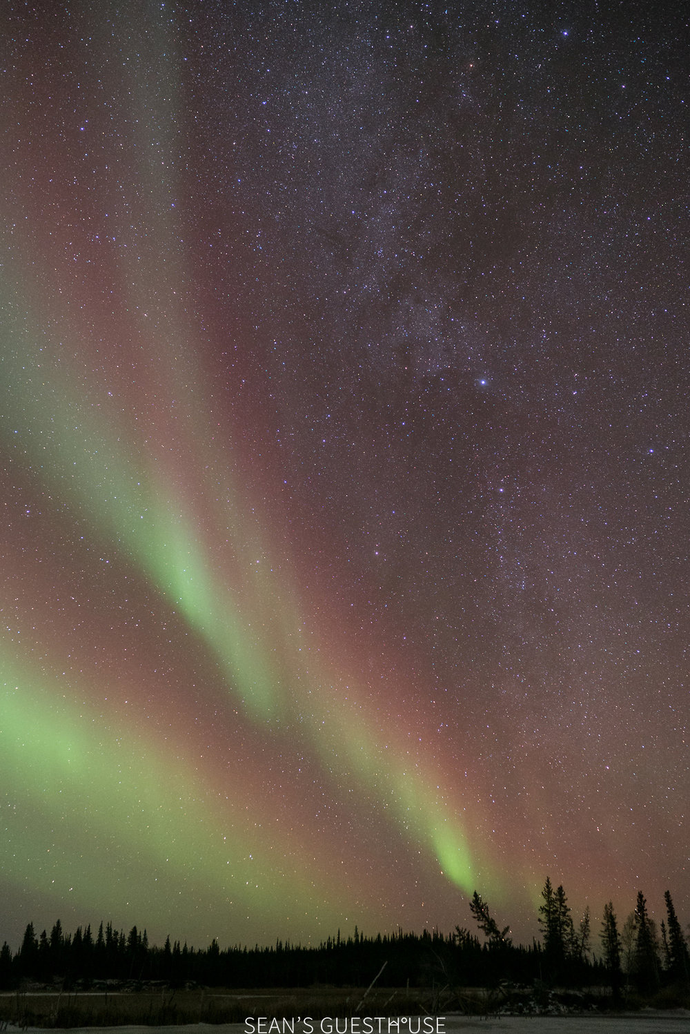 Northern Lights Hunting Yellowknife - 4.jpg