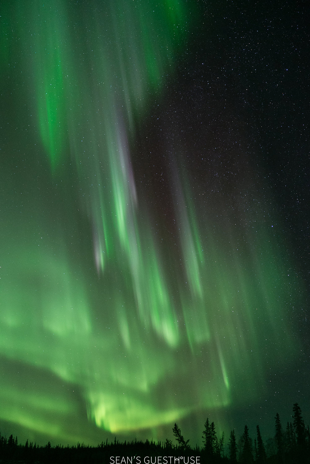Northern Lights Hunting Yellowknife - 7.jpg