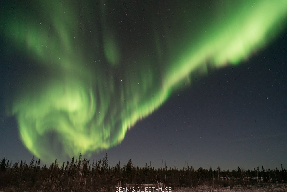 Yellowknife Northern Lights Guide - 3.jpg