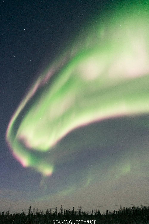 Yellowknife Northern Lights Tour - Aurora Borealis - 3.jpg