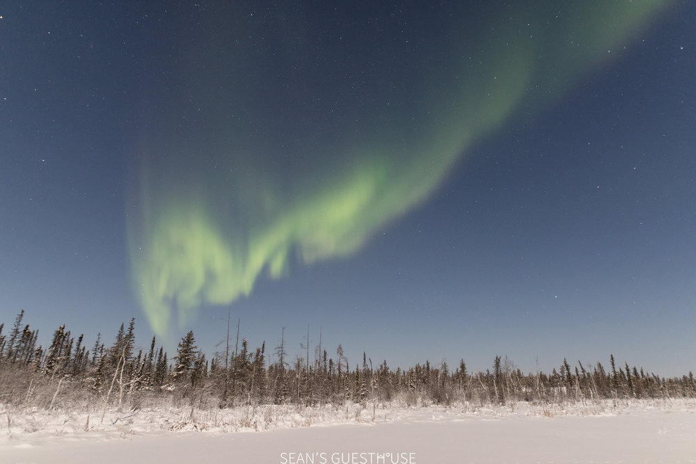 Aurora Hunting Yellowknife - Sean Norman - 2.jpg