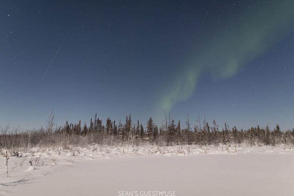 Aurora Hunting Yellowknife - Sean Norman - 3.jpg