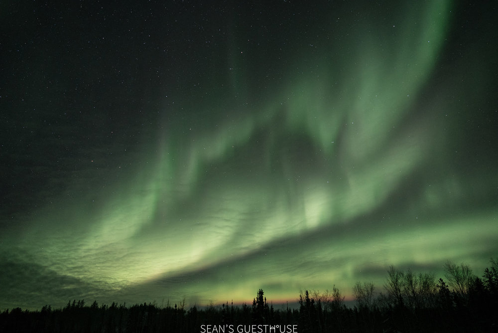 Aurora Hunting Tour in Yellowknife - Sean Norman - 2.jpg