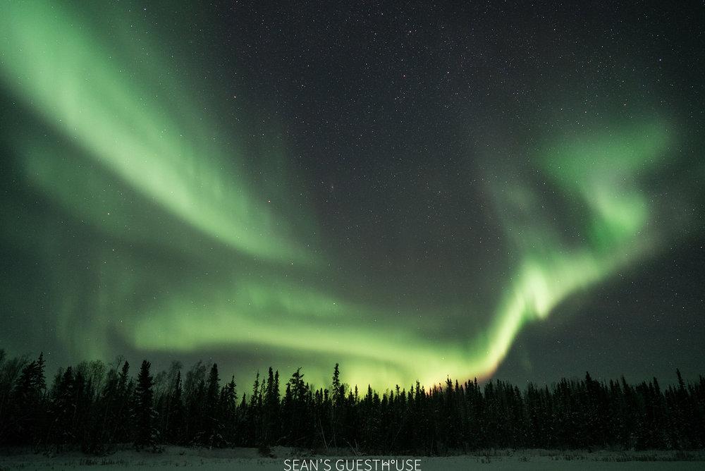 Yellowknife Aurora Tour - Sean Norman - 3.jpg