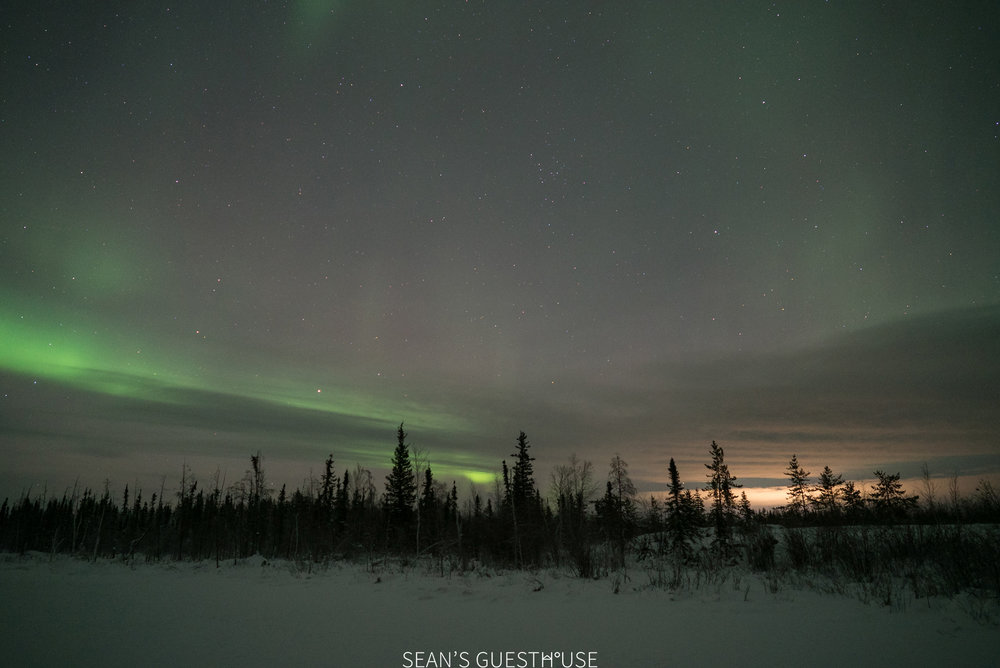 Yellowknife Aurora Hunting - Sean Norman - 2.jpg