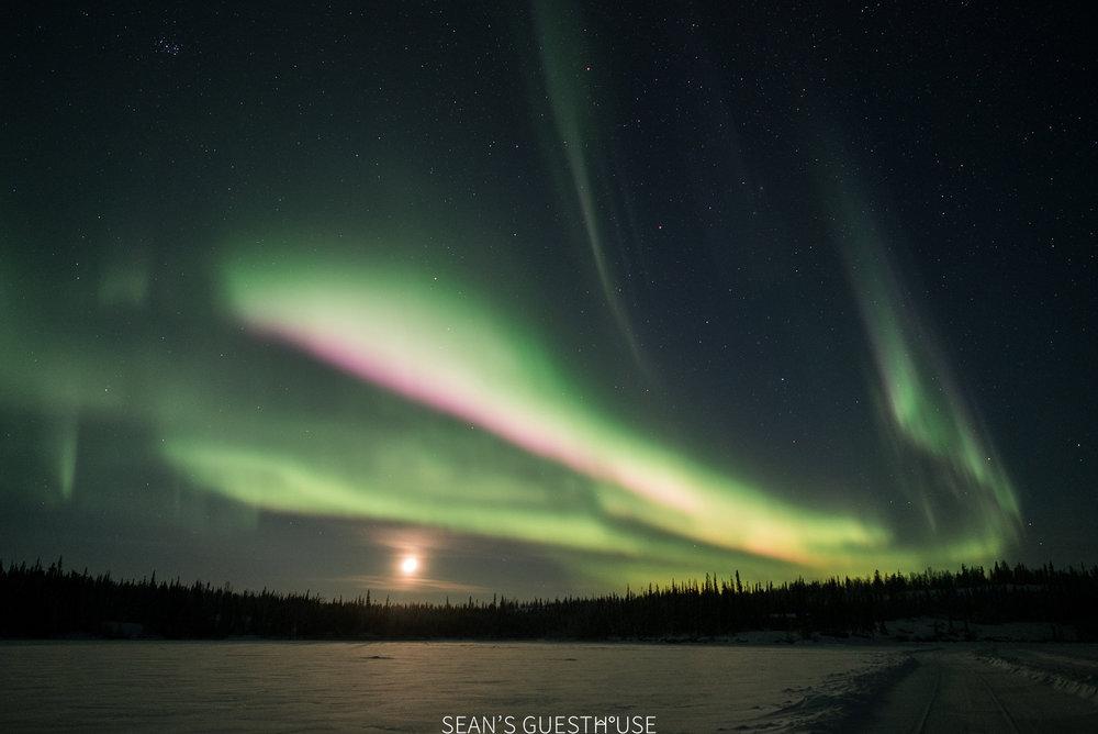 Yellowknife Northern Light Hunting Tour - Sean Norman - 6.jpg