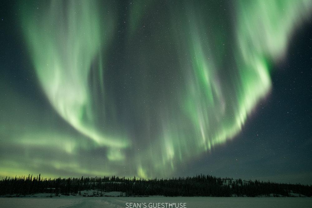 Yellowknife Northern Light Hunting Tour - Sean Norman - 8.jpg