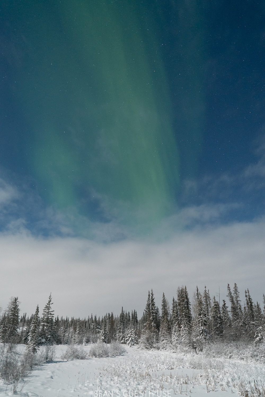 Northern Lights Yellowknife - Sean Norman Blog - 1.jpg