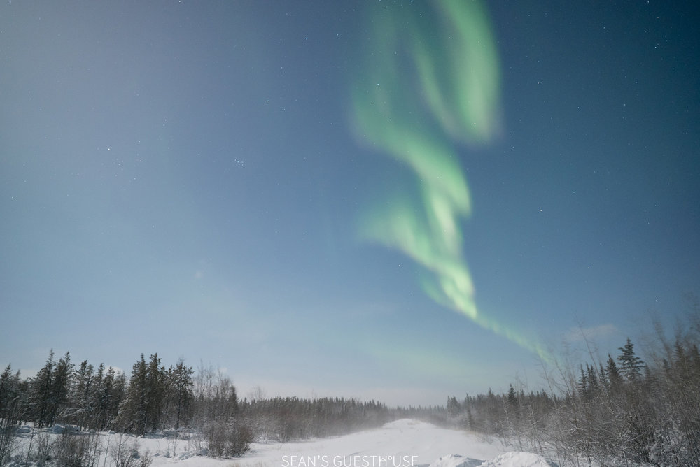 Northern Lights Yellowknife - Sean Norman Blog - 4.jpg