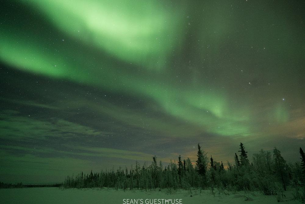 Yellowknife Aurora Borealis - Sean Norman - 2.jpg