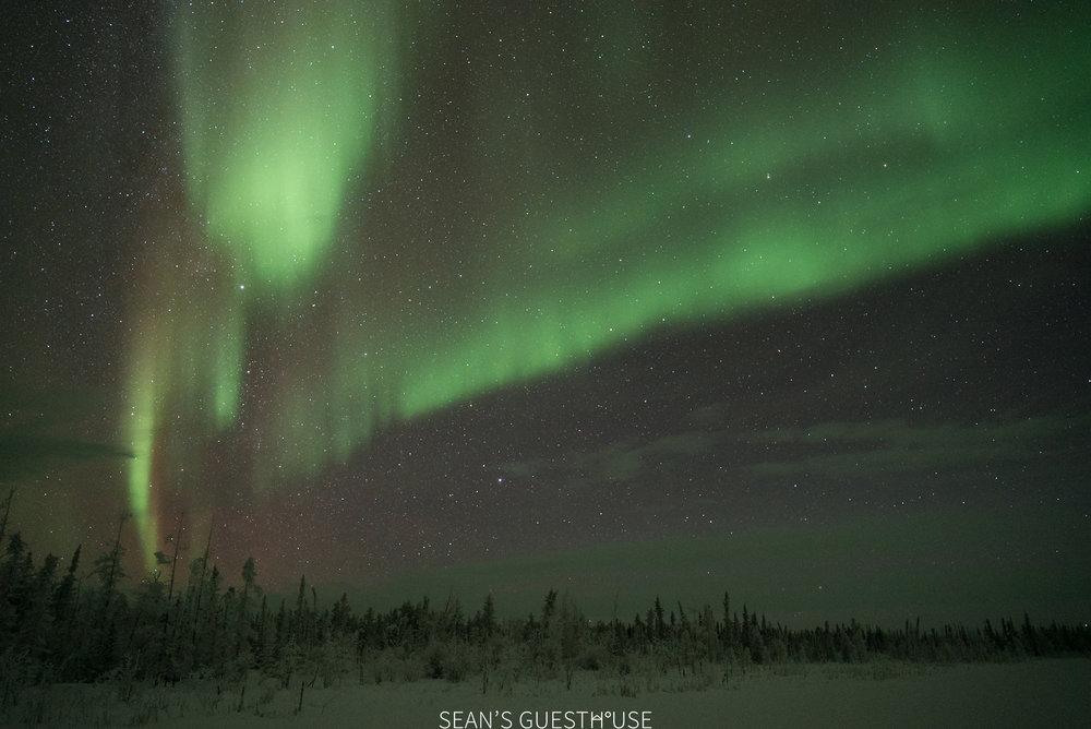 Yellowknife Aurora Borealis - Sean Norman - 1.jpg
