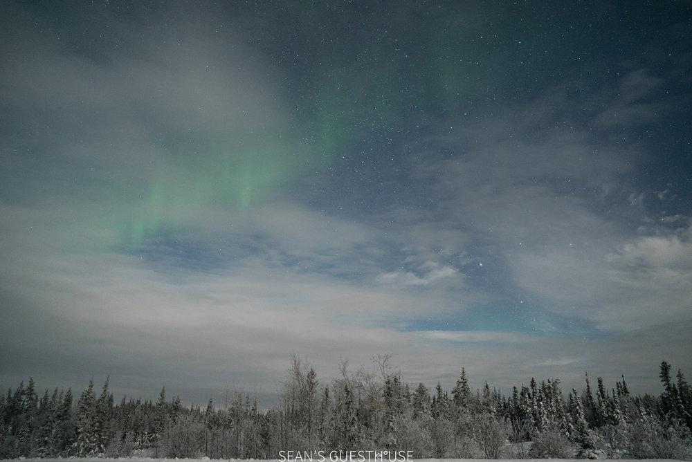 Yellowknife Aurora Borealis - Sean Norman - 5.jpg