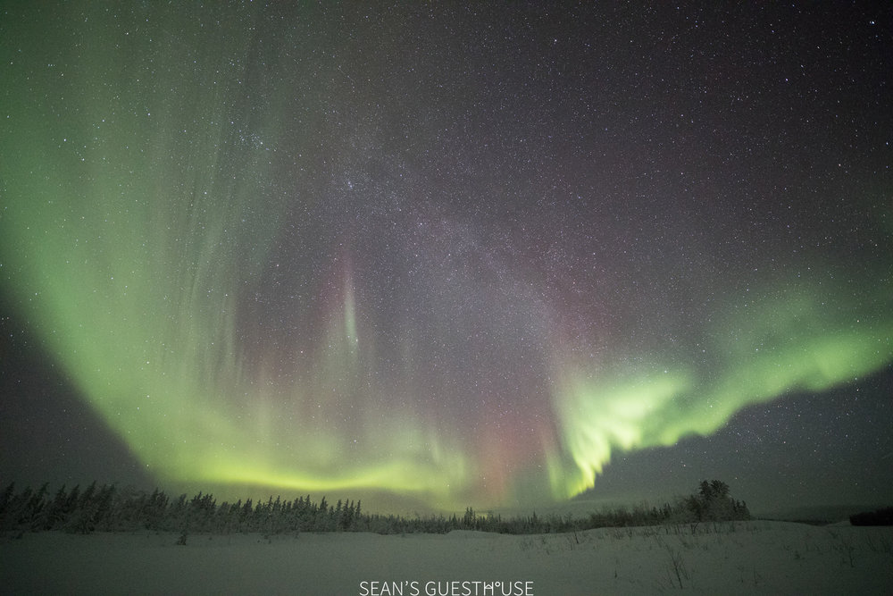 Aurora Hunting in Yellowknife - Sean Norman - 5.jpg