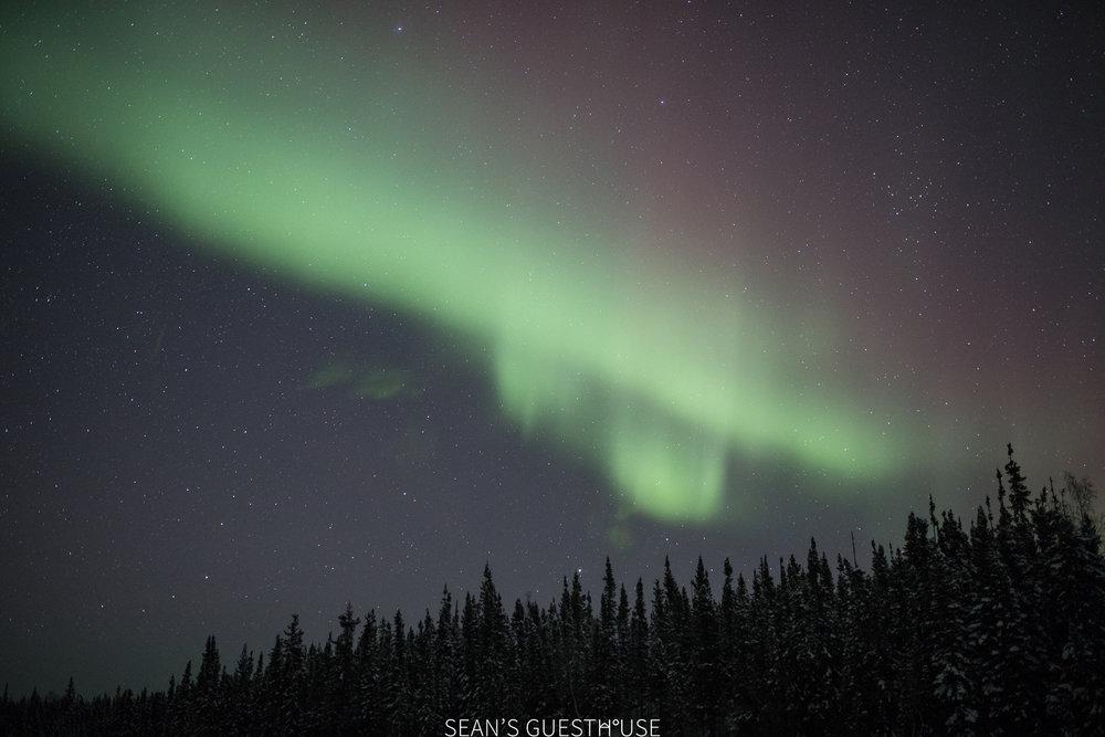 Yellowknife Aurora Hunting - 2.jpg