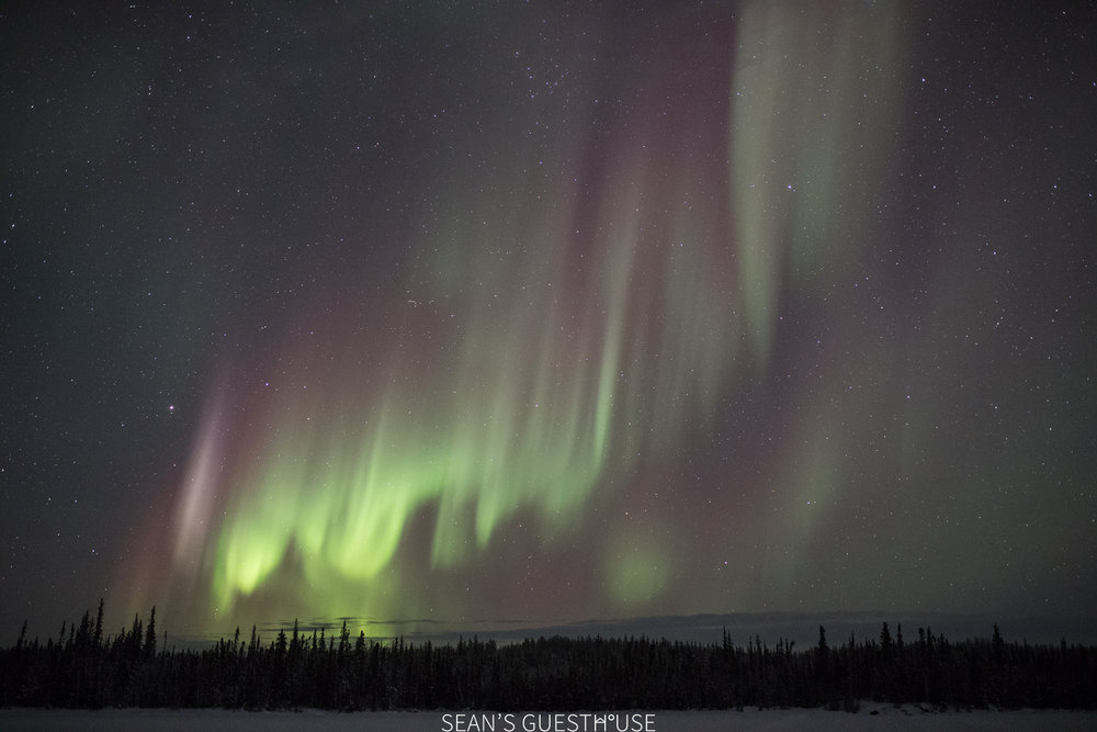 Yellowknife Best Aurora Tour - 2.jpg
