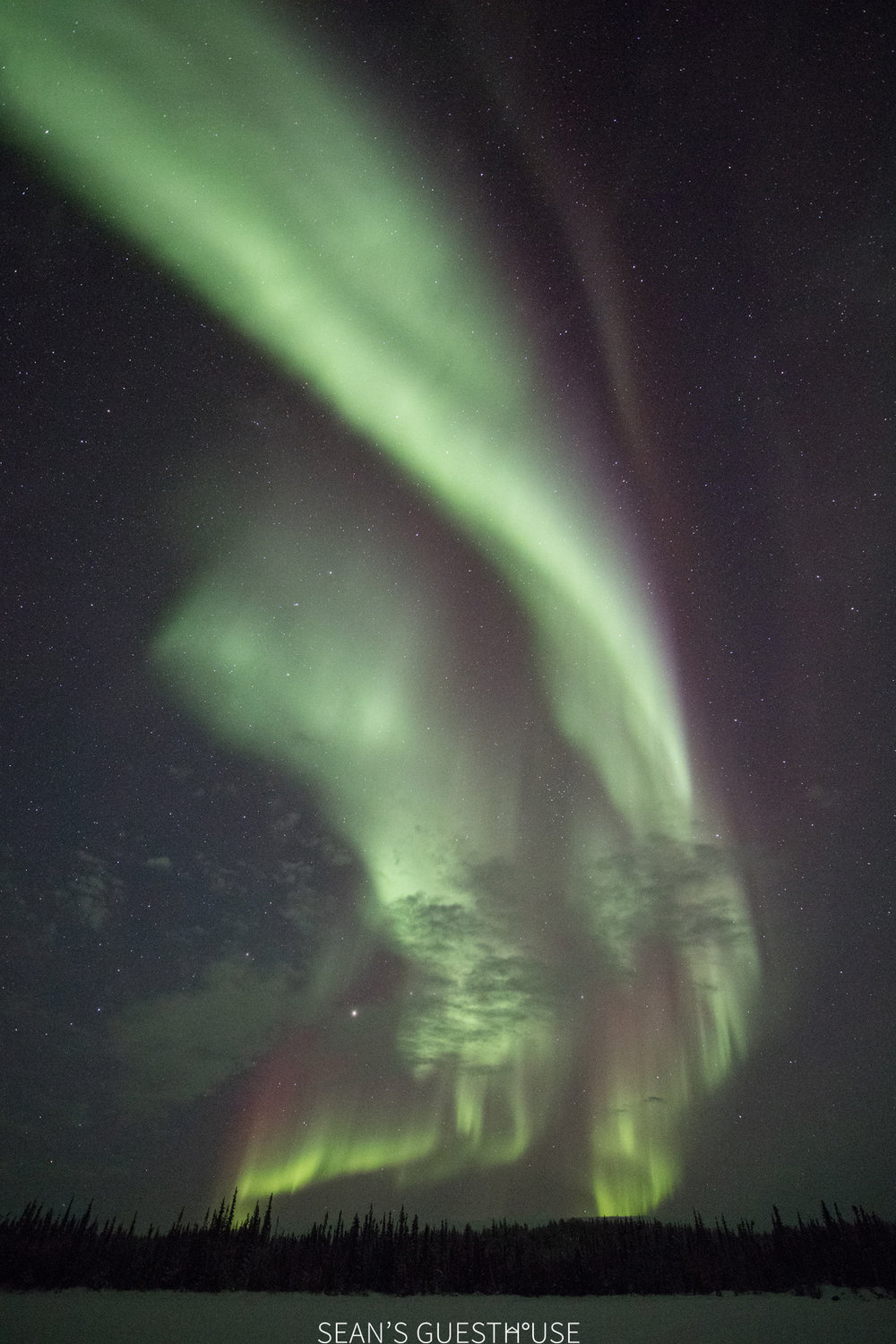 Yellowknife Best Aurora Tour - 3.jpg