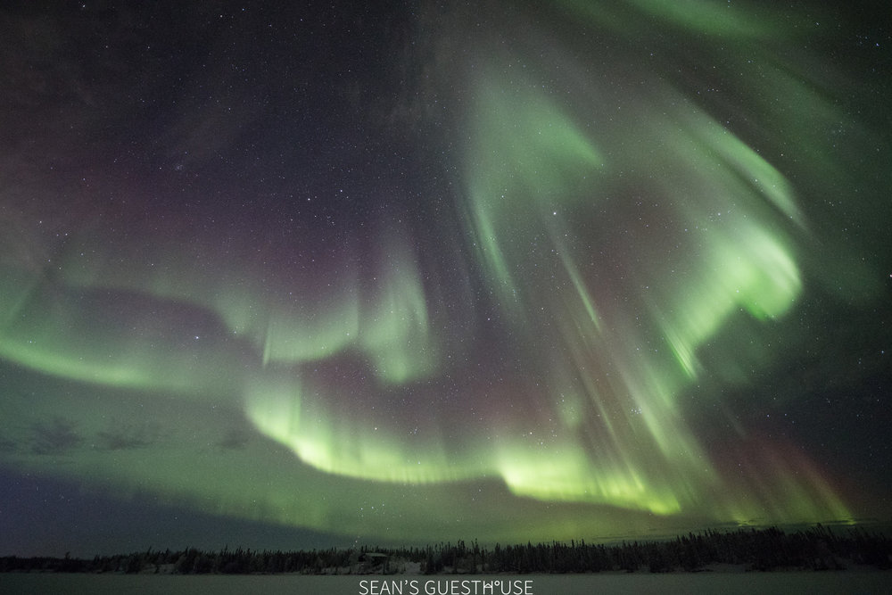 Yellowknife Best Aurora Tour - 6.jpg
