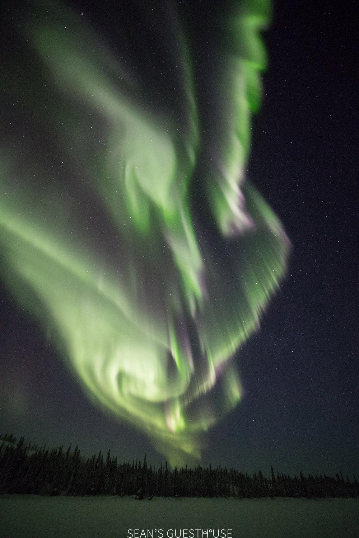 Yellowknife Aurora Tour - Sean Norman - 5.jpg