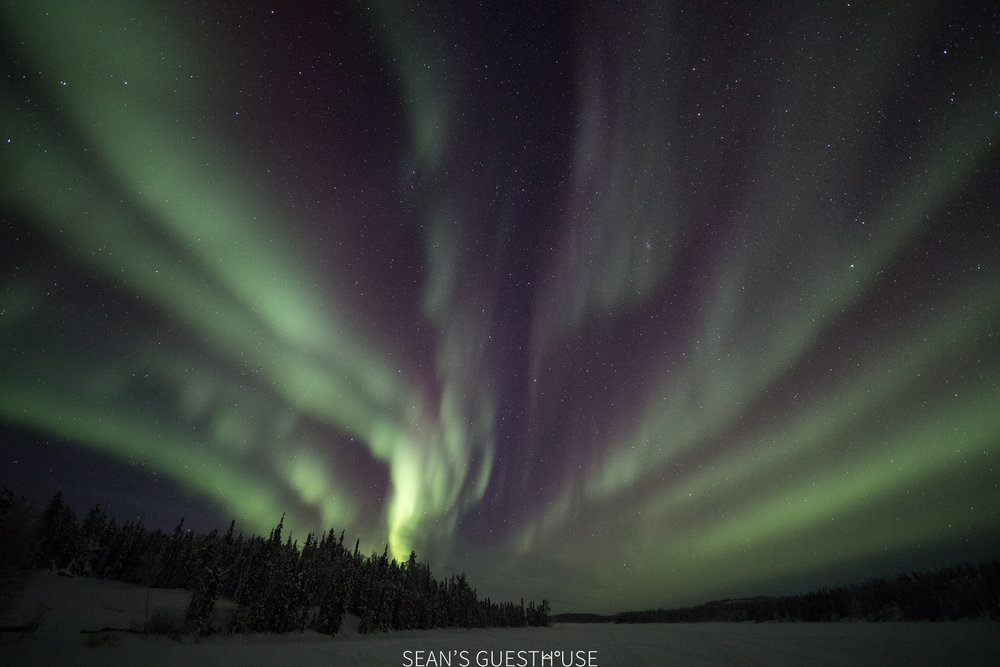 Sean Norman - Yellowknife Aurora Guide - 4.jpg