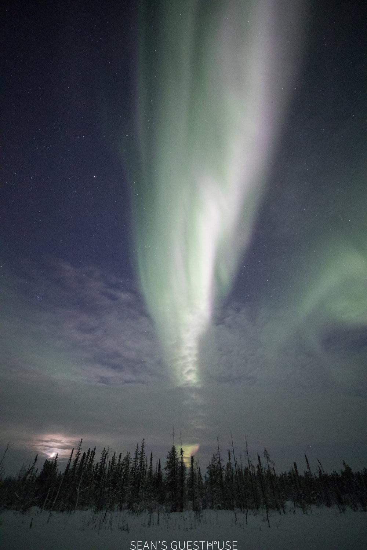 Yellowknife Aurora Company - Sean Norman - 6.jpg