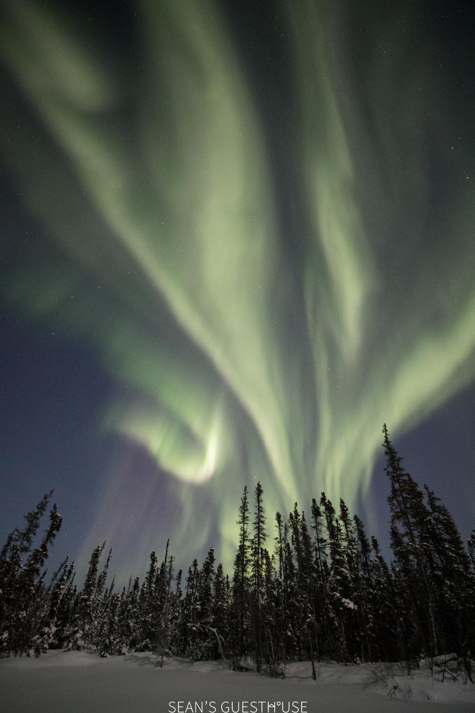 Yellowknife Bed and Breakfast - Aurora Tour - 2.jpg