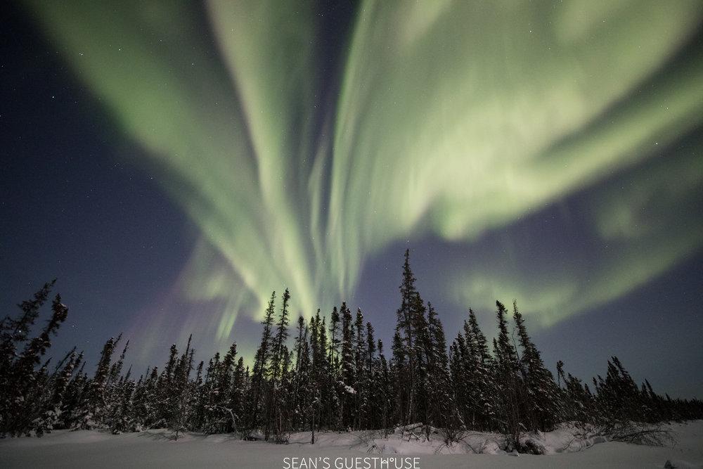 Yellowknife Bed and Breakfast - Aurora Tour - 1.jpg