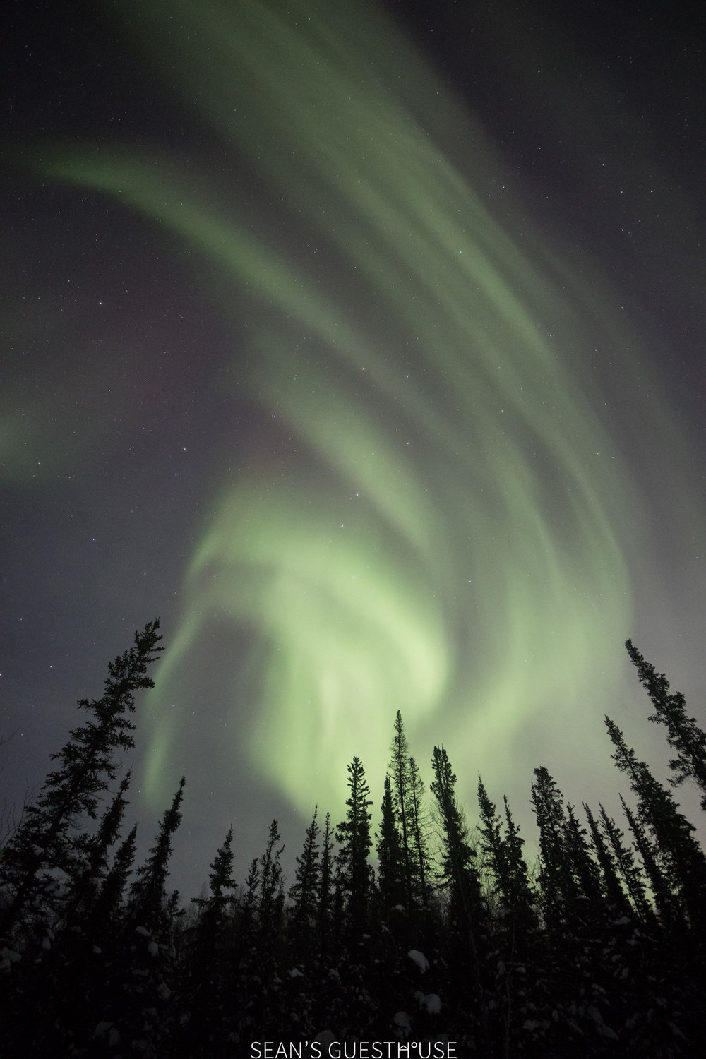 Yellowknife Aurora Hunting Tour - Sean Norman - 1.jpg
