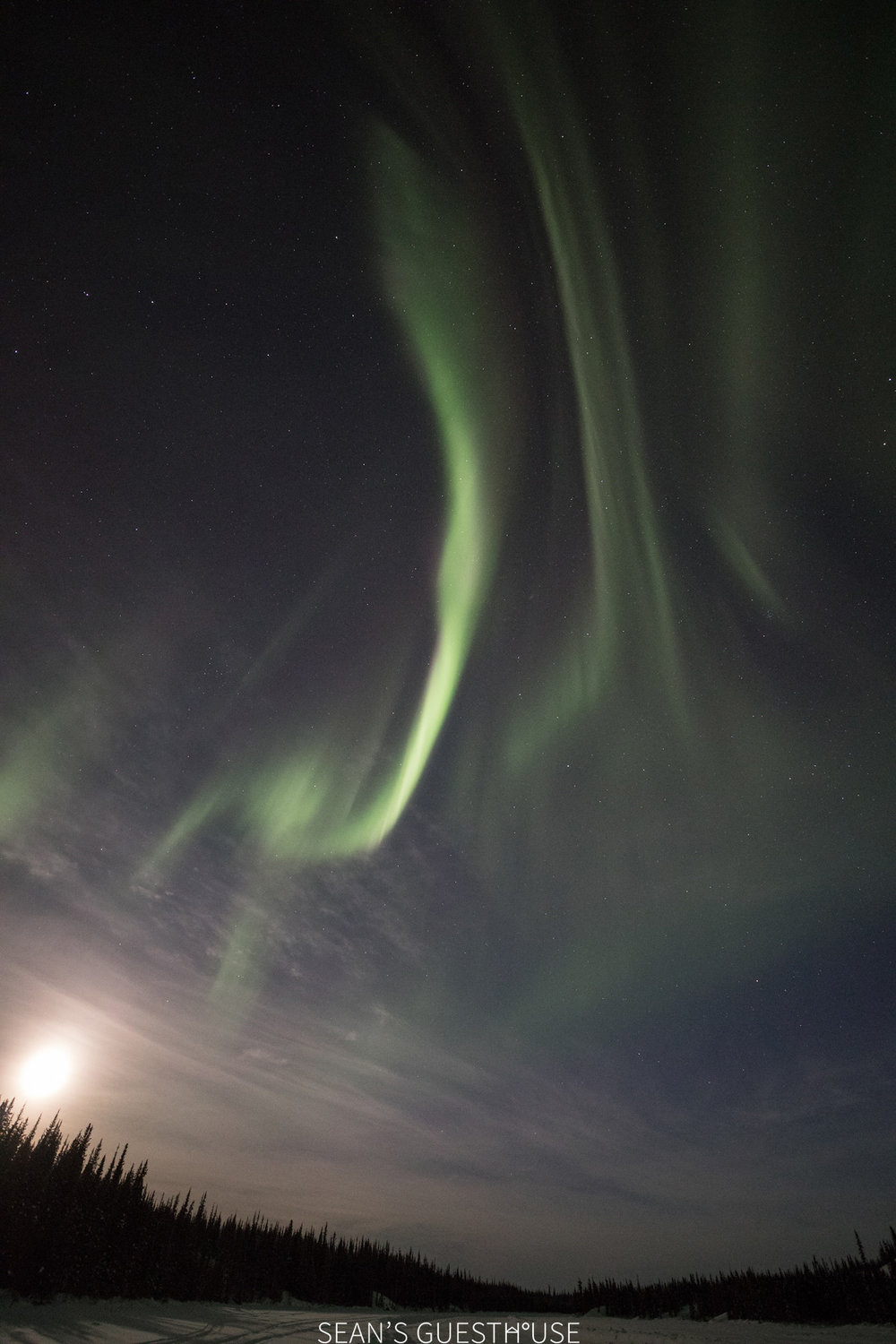 Yellowknife Aurora Hunting Tour - Sean Norman - 5.jpg