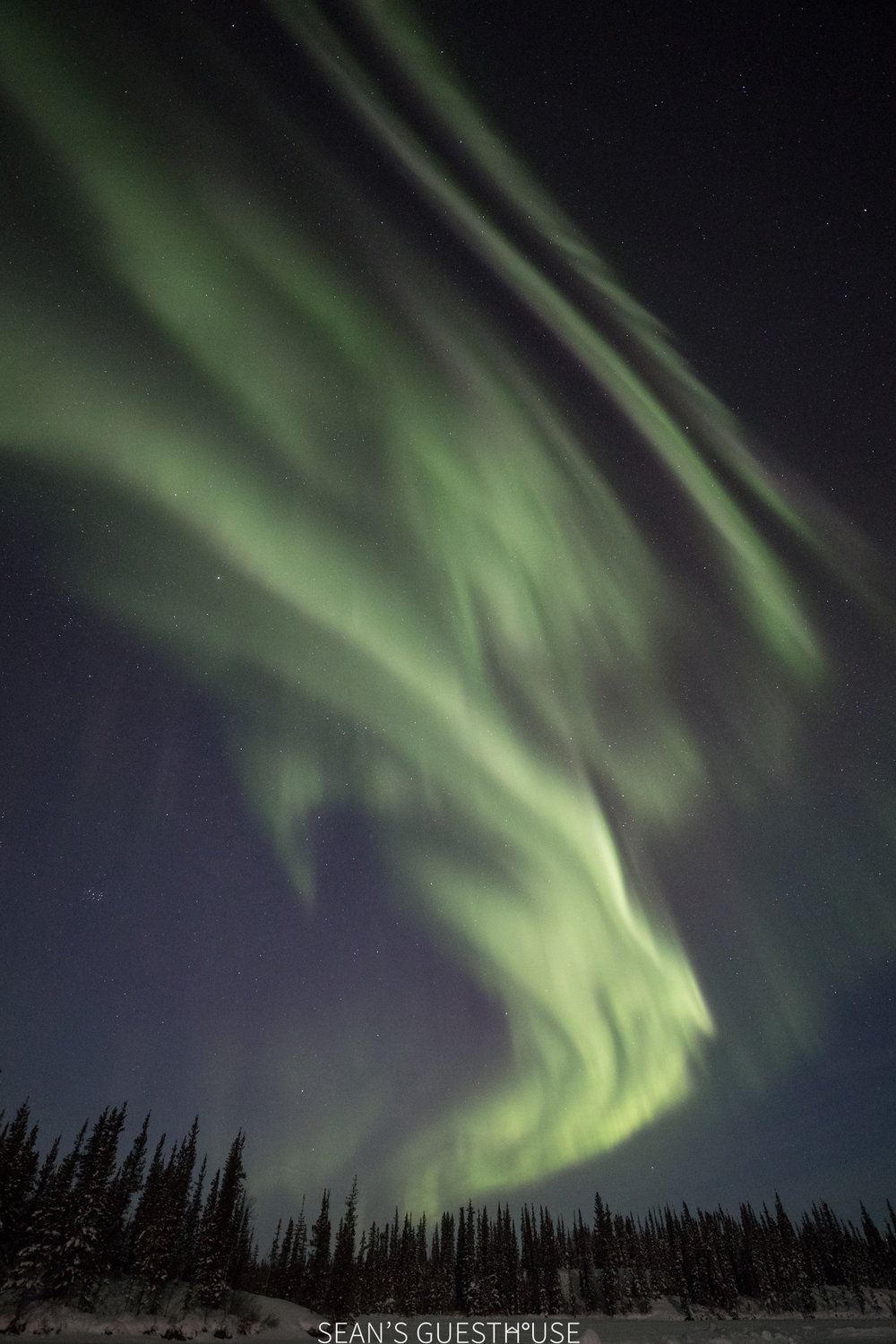 Yellowknife Aurora Hunting Tour - Sean Norman - 4.jpg
