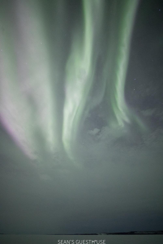 Sean Norman - Aurora Hunting Tour Yellowknife - 1.jpg